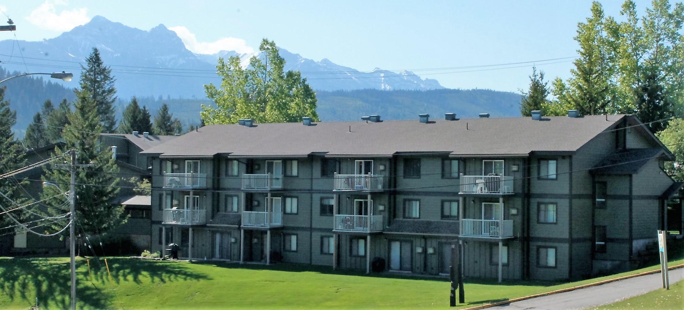 303C 1802 Alpine Drive